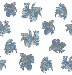 beautiful fish seamless pattern vector image
