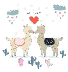 Cute alpaca couple vector