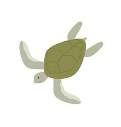 Green aquatic turtle with shell undersea tortoise vector