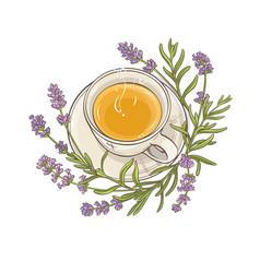 lavender tea vector image