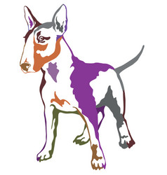 colorful decorative standing portrait of dog bull vector image