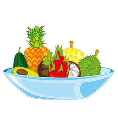 exotic tropical fruit on plate vector image