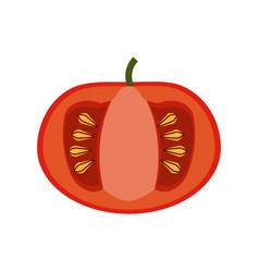 Tomatoe vegetable natural vector