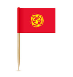 kyrgyzstan flag toothpick 10eps vector image vector image