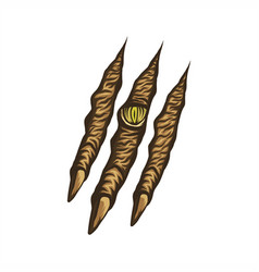 beast claw vector image