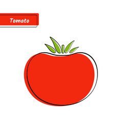 Flat red tomato education card with black contour vector