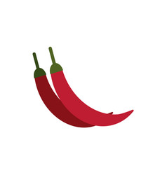 flat ripe chili pepper vector image
