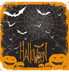 halloween background spider and pumpkins vector image