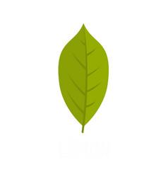 lemon leaf icon flat style vector image
