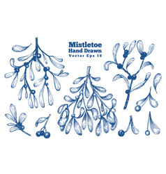 Mistletoe hand drawn branches set retro style vector