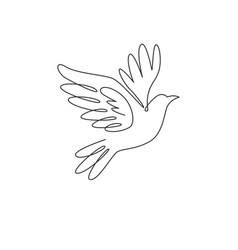 one single line drawing adorable elegant fly vector image