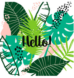 summer tropical design template design vector image