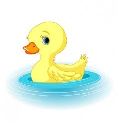 Swimming duckling vector