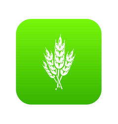 Wheat icon green vector