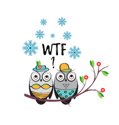 winter couple owls in swimsuits on a vector image