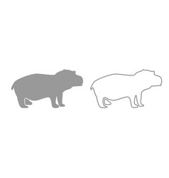 hippopotamus grey set icon vector image