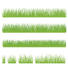 Set of green grass isolated on white background vector image vector image