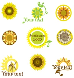 stylized sunflowers vector image vector image