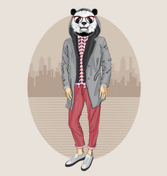 fashion panda portrait vector image