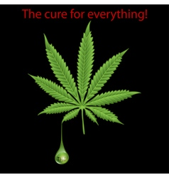 Marijuana leaf - THC vector image vector image