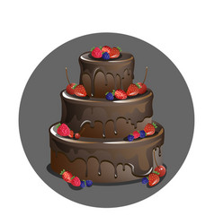 chocolate cake with berries vector image