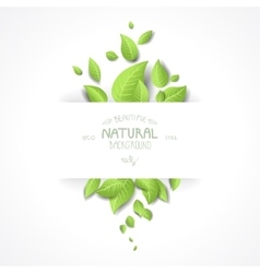 Abstract background with fresh green leaves vector image