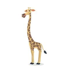 Funny giraffe cartoon icon in flat design vector