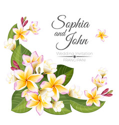sophia and john wedding invitation colorful vector image