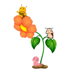 Three insect over flower vector