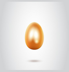 golden egg on white background vector image