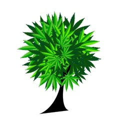 Abstract Cannabis Tree Background vector image