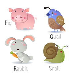 Alphabet with animals from P to S vector image vector image