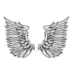 wings isolated on white background design vector image vector image