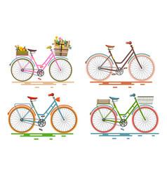 bicycles set retro bikes vector image
