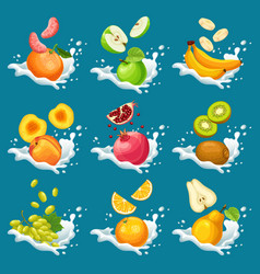 natural fruits in milk splashes collection vector image vector image