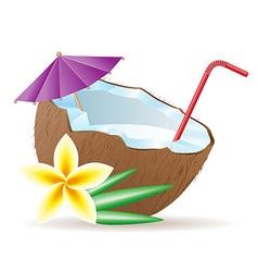 coconut 05 vector image