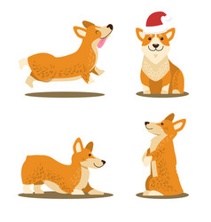 corgi dog set of four icons vector image