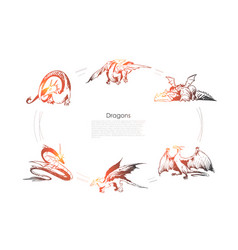 dragons - different types dragons vector image