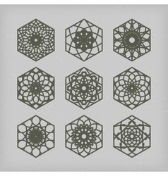 Hexagon Ornament Set vector