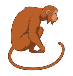 monkey icon cartoon style vector image