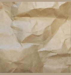 brown cardboard texture vector image vector image