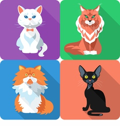 Set icon cat flat design vector image vector image