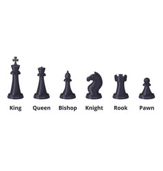 set of chess icons set isolate on white vector image