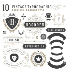Vintage Design Elements Arrows Retro Typography vector image