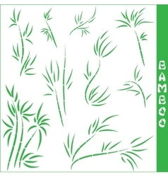bamboo elements vector image vector image