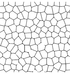 Black and white texture of cracked ground vector image