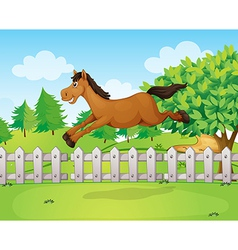 A jumping horse vector