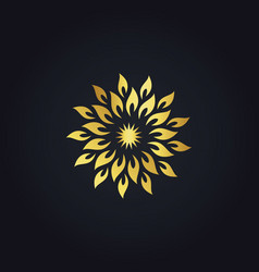 abstract gold star circle logo vector image