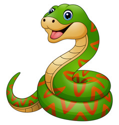 green snake cartoon vector image