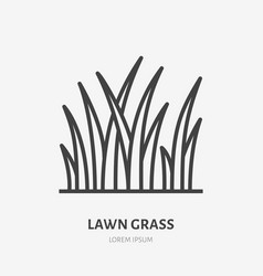 Lawn grass flat line icon thin sign of vector